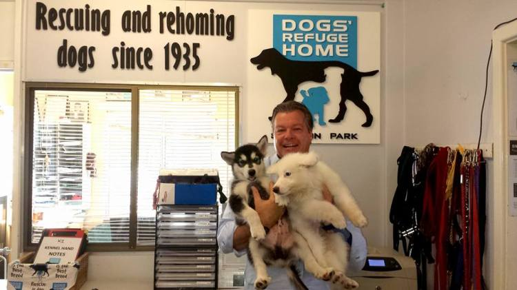 CanningAccountability Patrick Hall Dogs Refuge Home - CEO at the counter (3)