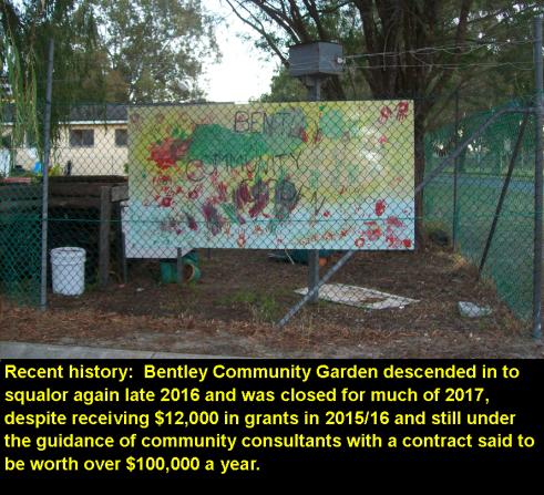 Bentley Community Garden gallery pic 1