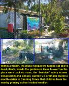 Bentley Community Garden gallery pic 5